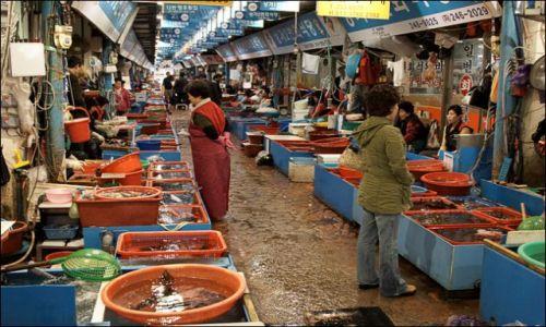 Zdjęcie KOREA POŁUDNIOWA / - / Pohang / Targ rybny