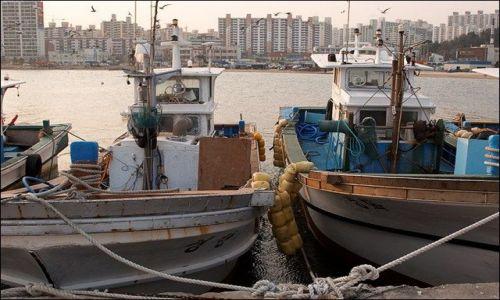 Zdjęcie KOREA POŁUDNIOWA / - / m. Pohang / port