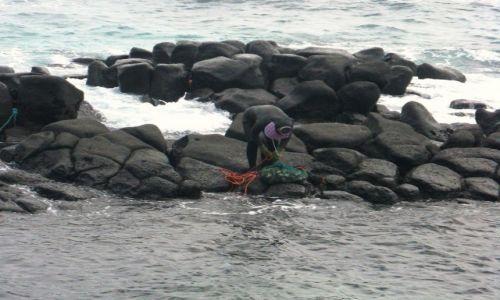 Zdjęcie KOREA POŁUDNIOWA / Wyspa Czedzu / Pd wyspy / Powrót z głębin oceanu