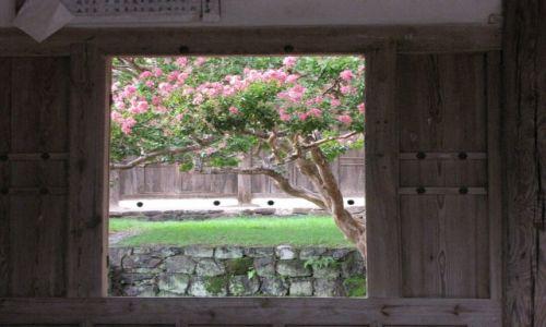 Zdjęcie KOREA POŁUDNIOWA / Andong / Dawna szkoła / Okno na świat