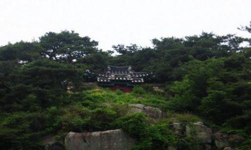 Zdjecie KOREA POŁUDNIOWA / Gyeongju / Gyeongju / Swiatyni w Korei Poludniowej