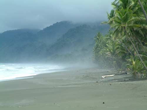 Zdjęcia: Carate, Półwysep Osa, Plaża w Carate, KOSTARYKA