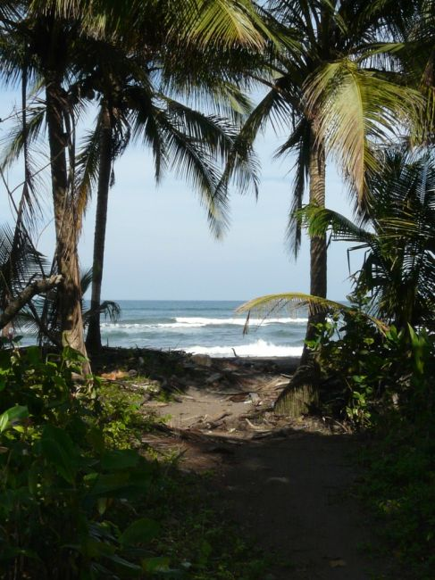 Zdjęcia: Tortuguero,  , widok na czarna plaze na Tortuguero, KOSTARYKA