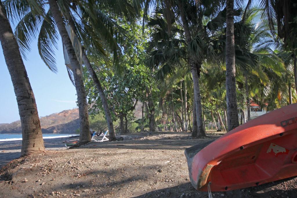 Zdjęcia: Playa Hermosa, Plaża przy hostelu El Velero, KOSTARYKA