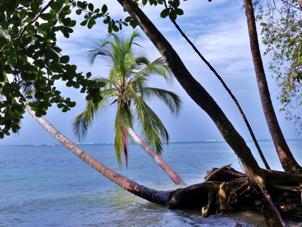 Zdjęcia: Cahuita, Morze Karaibskie, Cahuita, KOSTARYKA
