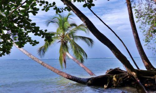 Zdjęcie KOSTARYKA / Morze Karaibskie / Cahuita / Cahuita