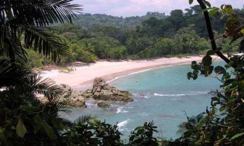 KOSTARYKA / PN Manuel Antonio / PN Manuel Antonio / W cieniu lasu tropikalnego