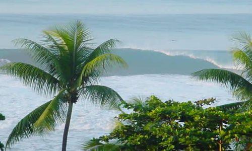 Zdjęcie KOSTARYKA / Półwysep Osa / Carate / Pacyfik