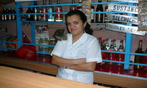 Zdjecie KOSTARYKA / San Jose / W barze / Dziewczyna z kotem