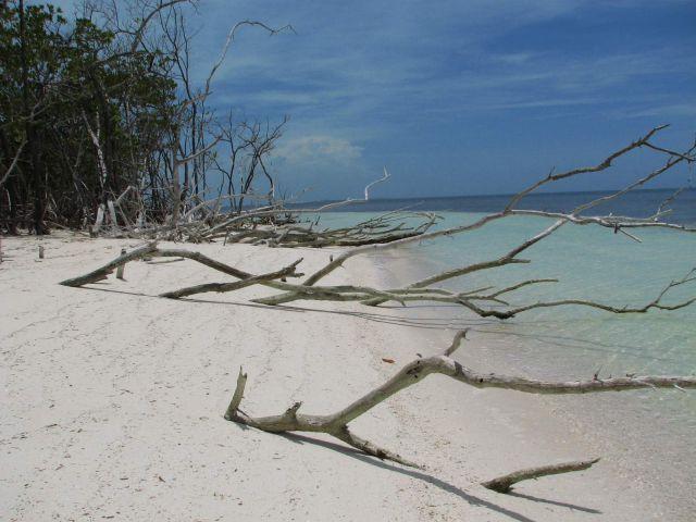 Zdjęcia: kuba, polnocnz archipelag, playa, KUBA