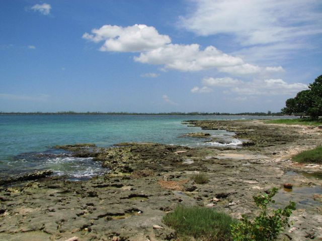 Zdjęcia: Kuba, Południe, wybrzeże morza karaibskiego, KUBA