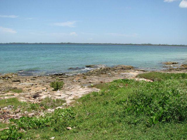 Zdjęcia: Kuba, Południe, wybrzeże południowe, KUBA