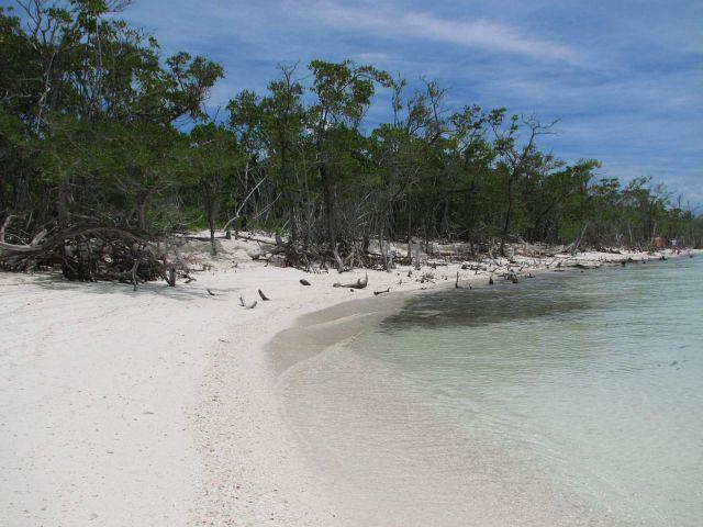Zdjęcia: Kuba, północna kuba, plaża, KUBA