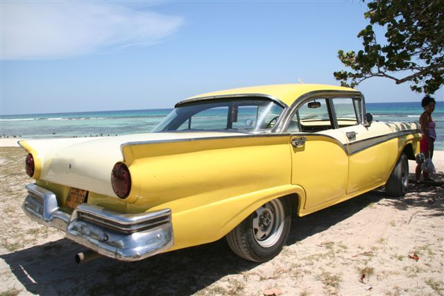 Zdjęcia: Playa Giron, półwysep Zapata, dzika paża, KUBA