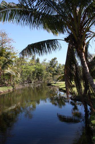 Zdjęcia: Cienga de Zapada, Ferma krokodyli, KUBA
