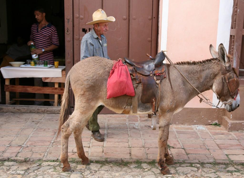 Zdjęcia: Trynidad de Cuba, Sancti Spiritus, Smutny świat, KUBA