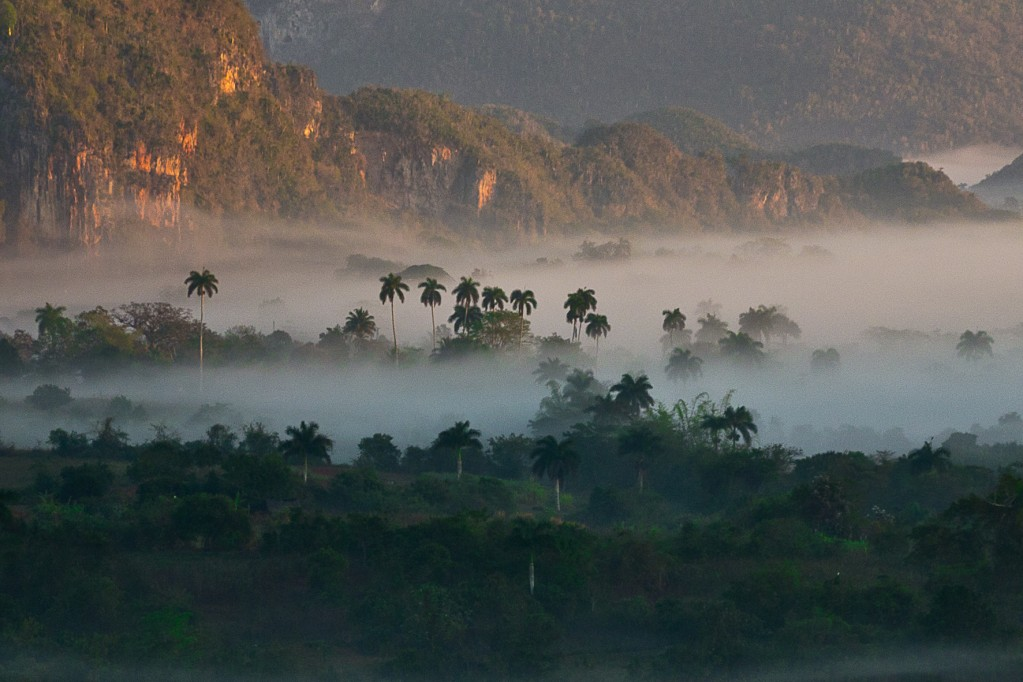 Zdjęcia: tam, Dolina Vinales, Poranek w dolinie Vinales 1, KUBA