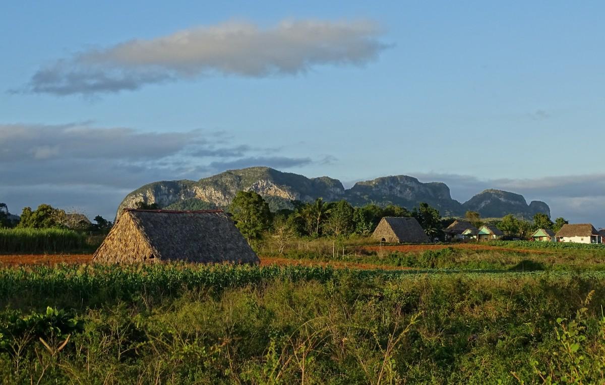 Zdjęcia: Viñales, Dolina Viñales, Tam, gdzie rosną cygara, KUBA