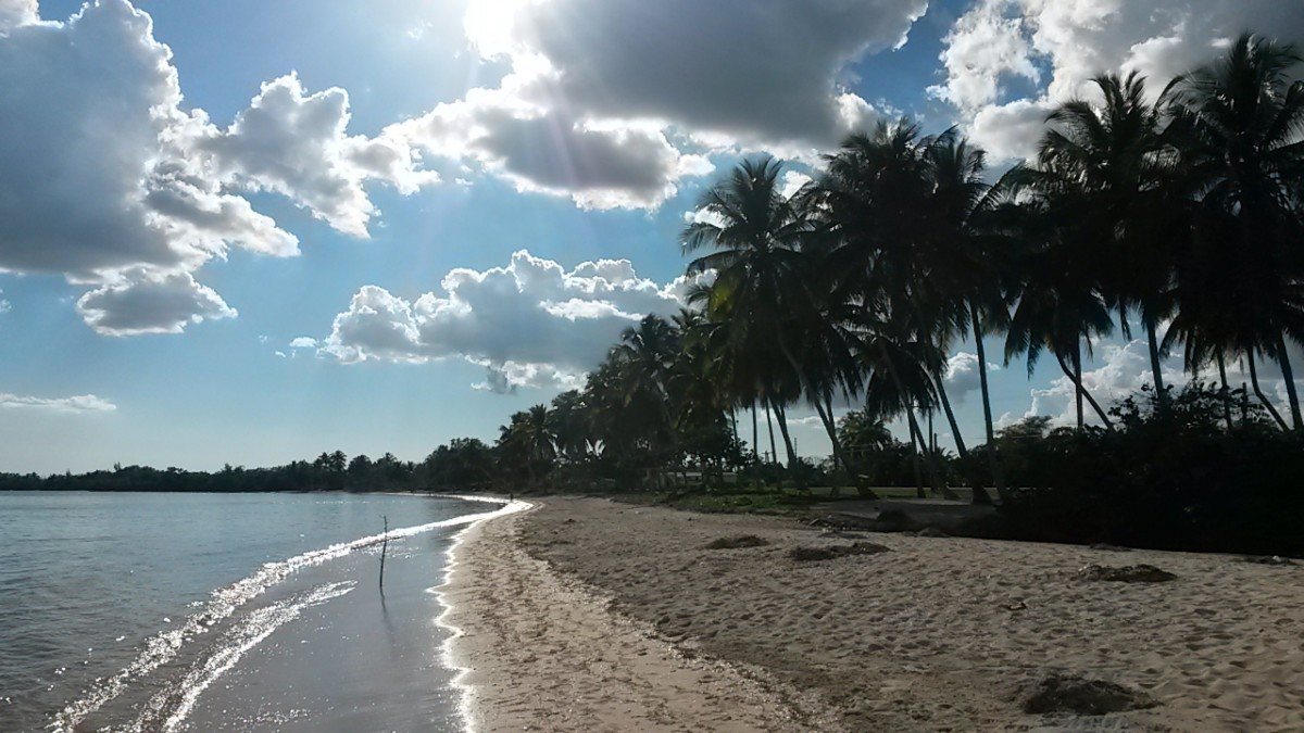 Zdjęcia: Playa Larga, Playa Larga, Playa Larga, KUBA