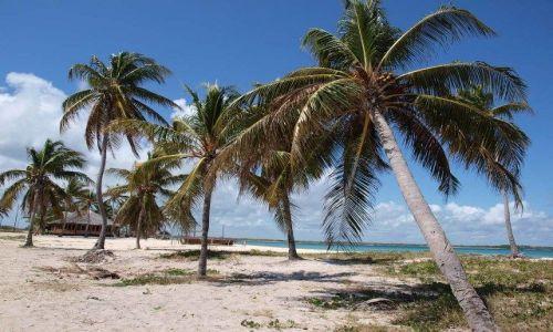Zdjecie KUBA / - / Playa Santa Lucia / Plaża jak ze snów