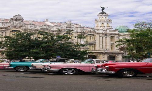 Zdjecie KUBA / Havana / Auta do wynajęcia przy Parque Central / Car rental