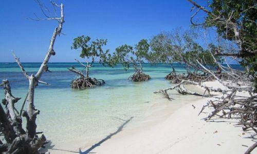 Zdjęcie KUBA / prowincja Pinal del Rio / Playa Jutias / Playa Jutias