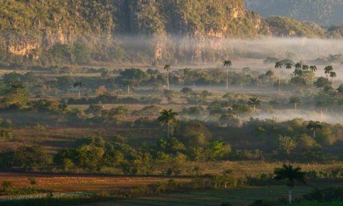 Zdjęcie KUBA / Dolina Vinales / tam / Poranek w dolinie Vinales