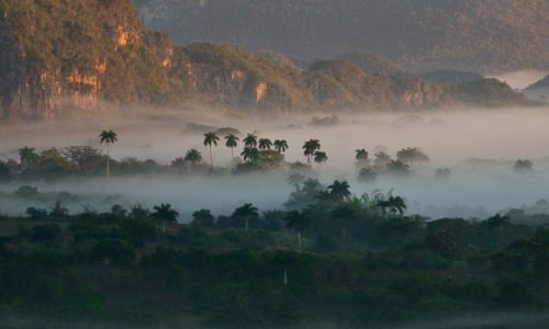 Zdjęcie KUBA / Dolina Vinales / tam / Poranek w dolinie Vinales 1