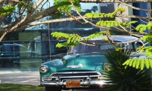 Zdjecie KUBA / -Kuba / Havana / nostalgia