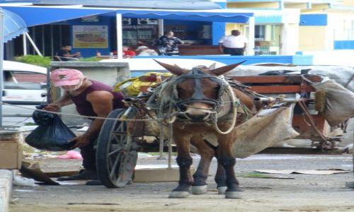 Zdjecie KUBA / Kuba / Havana / zycie lekkie ni