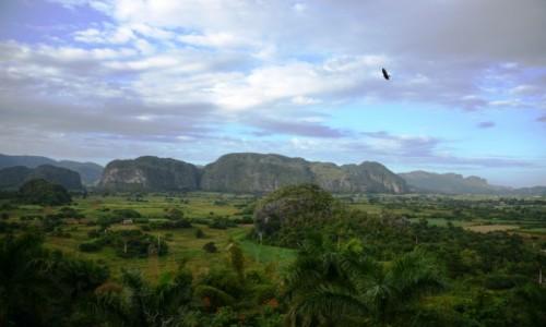 Zdjęcie KUBA / xxx / Valle de Viñales / Rajski obrazek