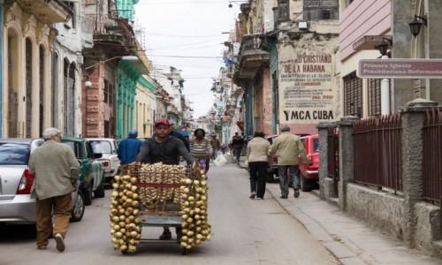 Zdjęcie KUBA / Hawana / Hawana / Sprzedawca cebuli