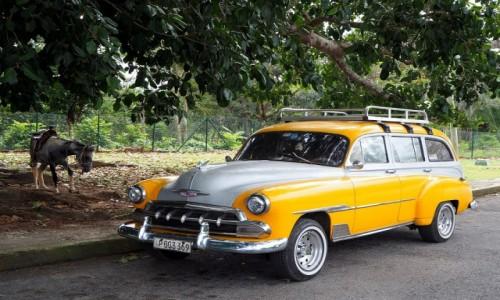 KUBA / Pinar del Río,  zachodnia Kuba / Valle de Vinales / Na koniu czy samochodem?