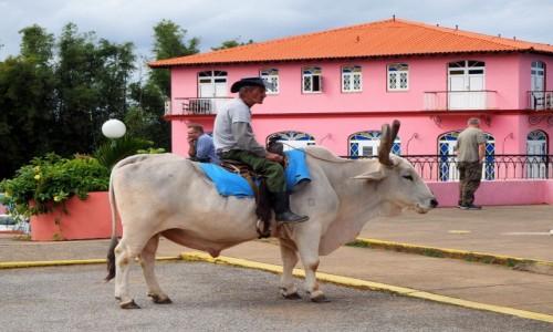 Zdjecie KUBA / Pinar del Río,  zachodnia Kuba / Valle de Vinales / Przejażdżka na wole;)