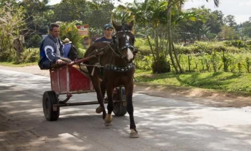 Zdjecie KUBA / Prowincja Pinar del Rio / Vinales / Taxi