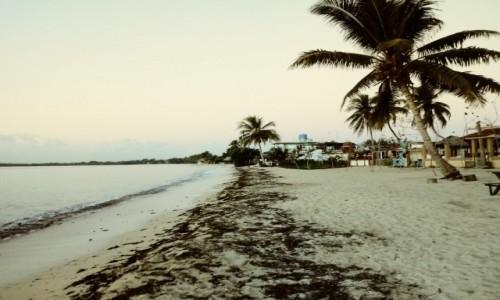 Zdjecie KUBA / zatoka świń / playa larga / noclegi