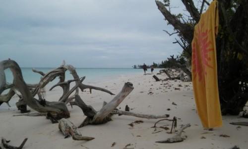 Zdjecie KUBA / Pinar de Rio / Cayo jutias / Rajska plaża