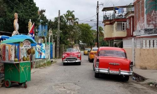 Zdjęcie KUBA / - / Hawana - Fusterlandia / Kolorów nie brakuje