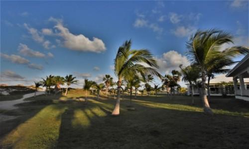 Zdjecie KUBA / Półwysep Varadero / Fiesta Americana Punta Varadero / Półwysep Varadero, przyroda
