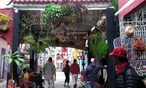 Zdjecie KUBA / Hawana / Hawana / Callejon de Hamel