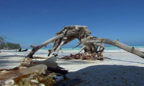 Zdjecie KUBA / brak / Cayo Blanco / Rajska plaża