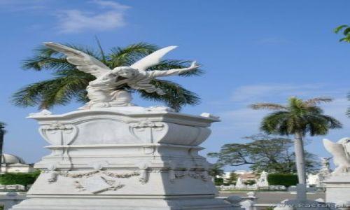 Zdjecie KUBA / brak / Havana / Kubańskie klimaty