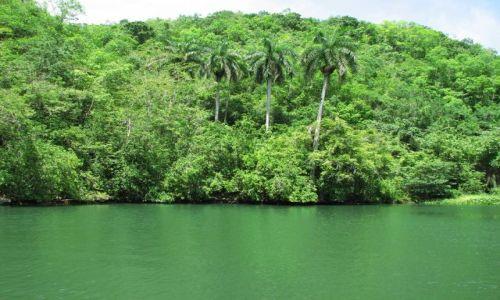 Zdjęcie KUBA / okolice Matanzas / Kuba / rzeka