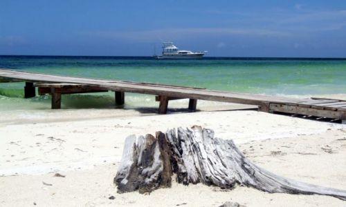 Zdjęcie KUBA / wyspy / cayo largo / sielanka