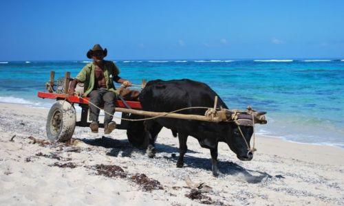Zdjęcie KUBA / Baracoa / Wybrzeże karaibskie / Dzika plaża