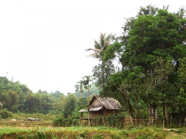 Ban That Laos  city pictures gallery : ... Ban Hat Sao, Laos północny, trekking do wodospadu Tad Mook, LAOS