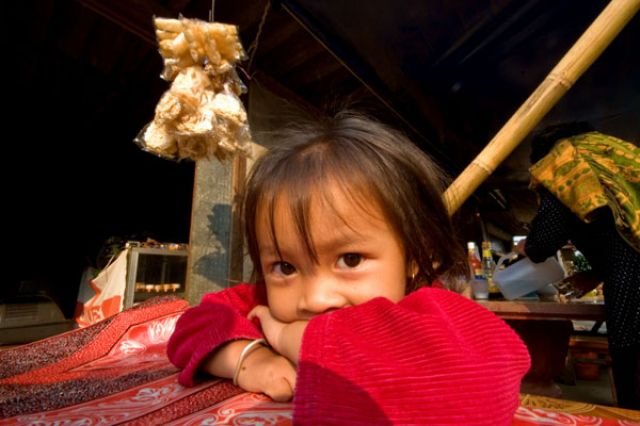 Zdjęcia: HUAY XAI, Misto graniczne nad Mekongem, Wstydliwa, LAOS
