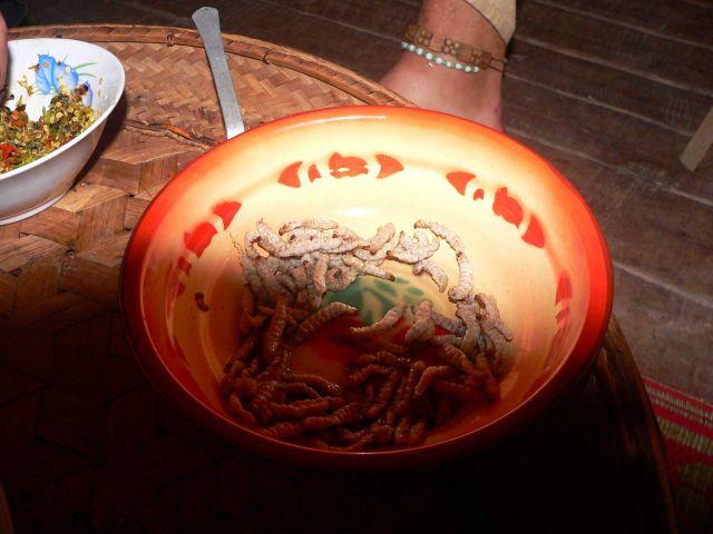 Zdjęcia: Muang Singh, Muang Singh, pędraki na kolacje, LAOS