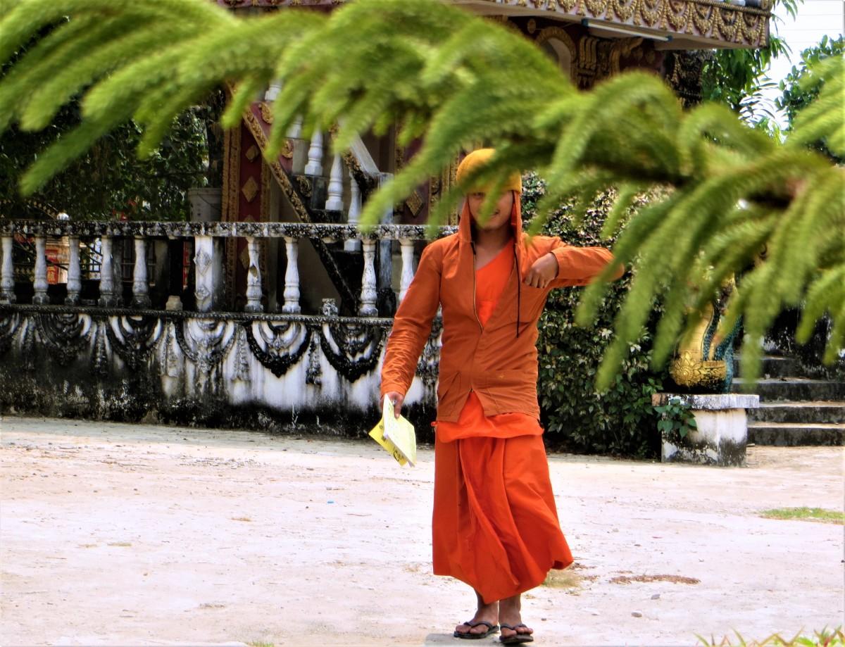 Zdjęcia: okolice  Vang Vien, prowincja Wientian, Podglądanie mnichów, LAOS