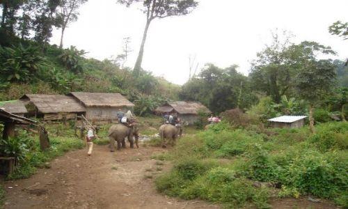 Zdjęcie LAOS / laos / laos / po drodze